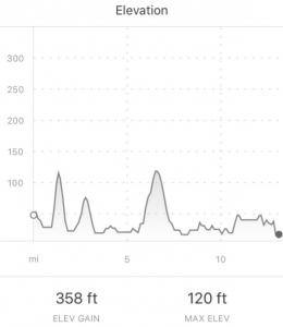 Profile Half Marathon 17